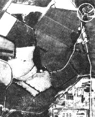 The Holocaust/Holohoax - Page 3 BallMassgra1k