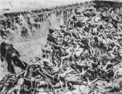 Codoh.com   'Extermination' Camp Propaganda Myths